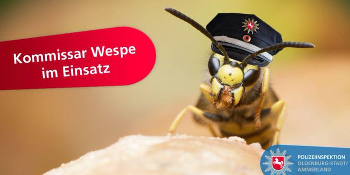 Sting operation: Angry wasps help German police nab fleeing fugitive