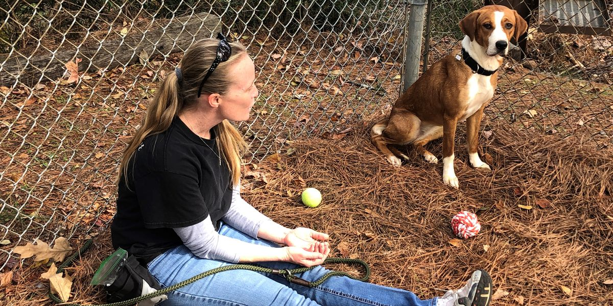 Encore Enrichment Center for Shelter Animals says funding issues may force it to close