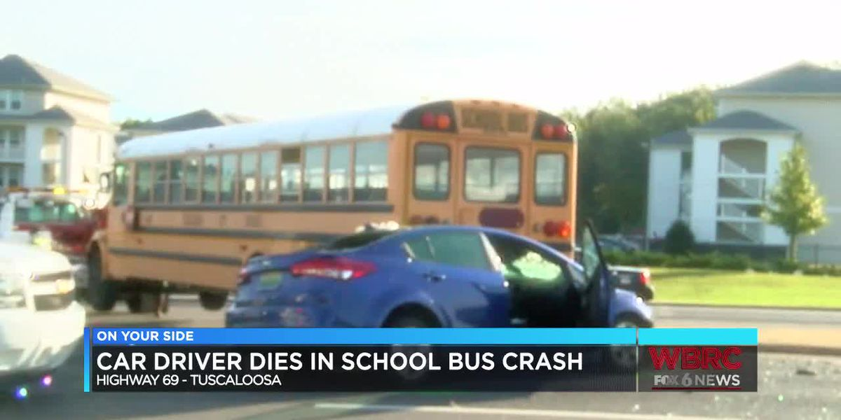 Car driver dies in school bus crash
