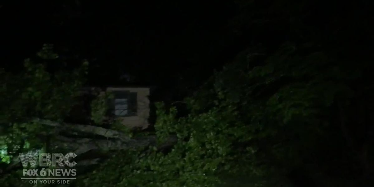 VIDEO: Storm damage in Center Point