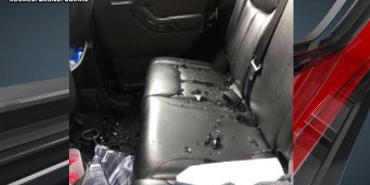 Tuscaloosa Police investigate at least 20 car break-ins