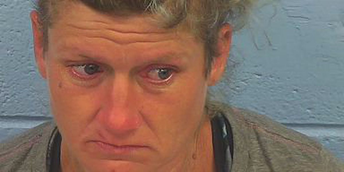Etowah Co. woman charged with arson and burglary