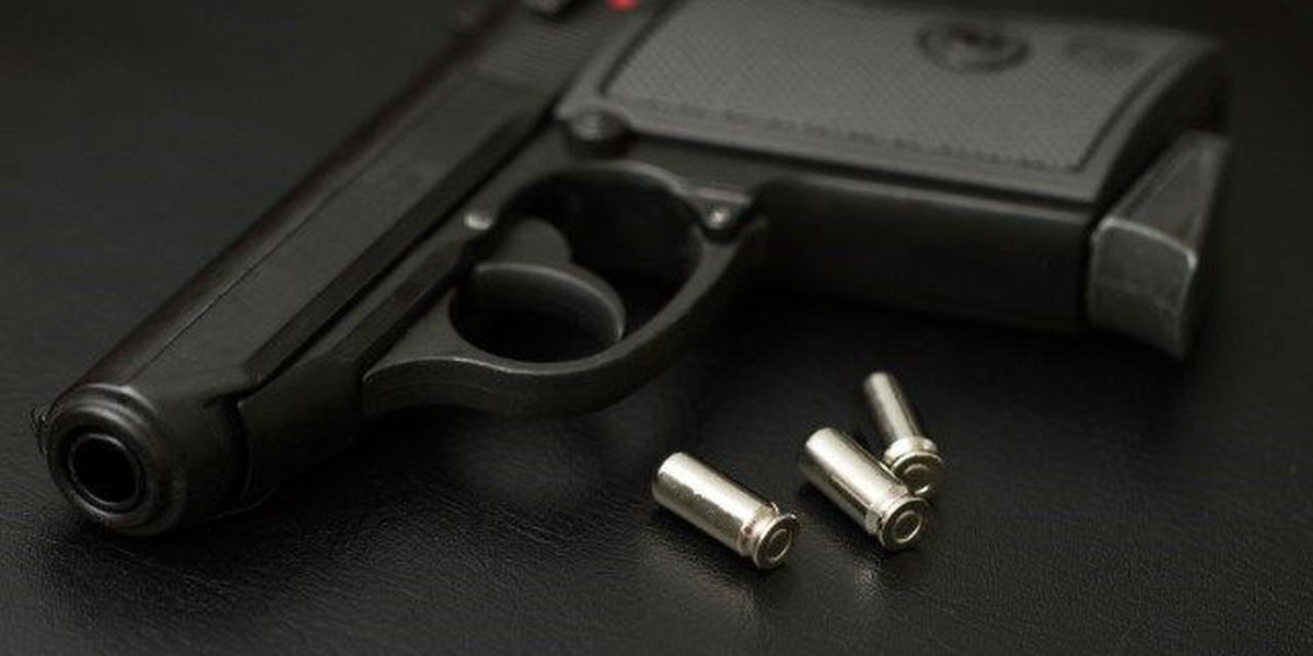 Alabamians react to proposed gun control measures