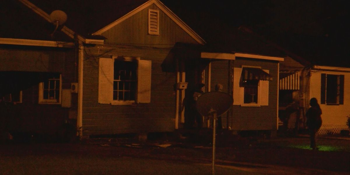 Two dogs dead after house fire caused by space heater