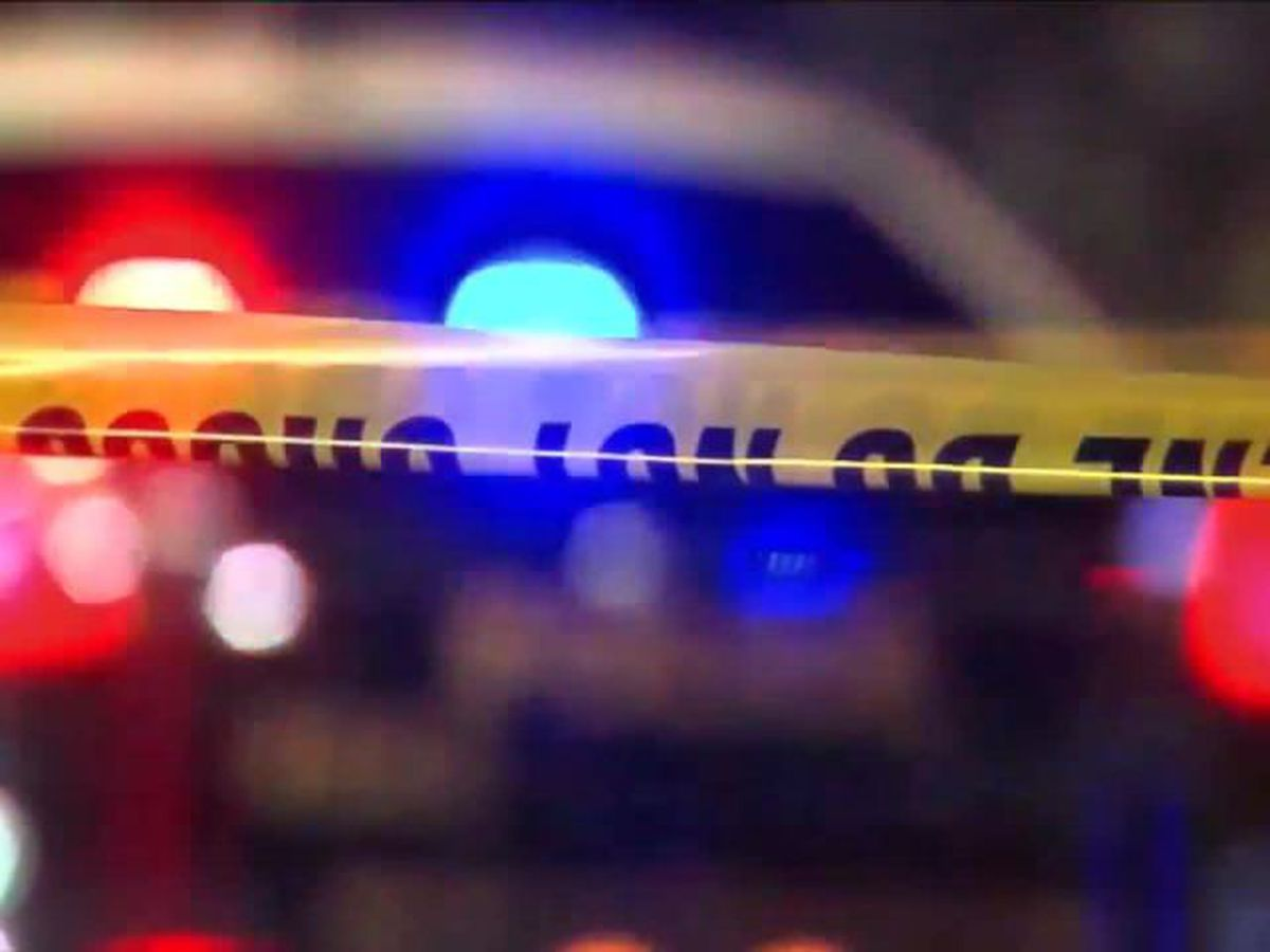 Birmingham police investigating two late-night homicides