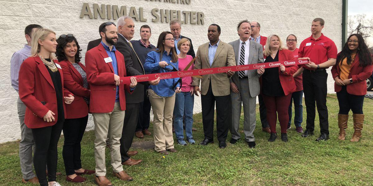 New addition makes pet adoption easier at Tuscaloosa Metro Animal Shelter