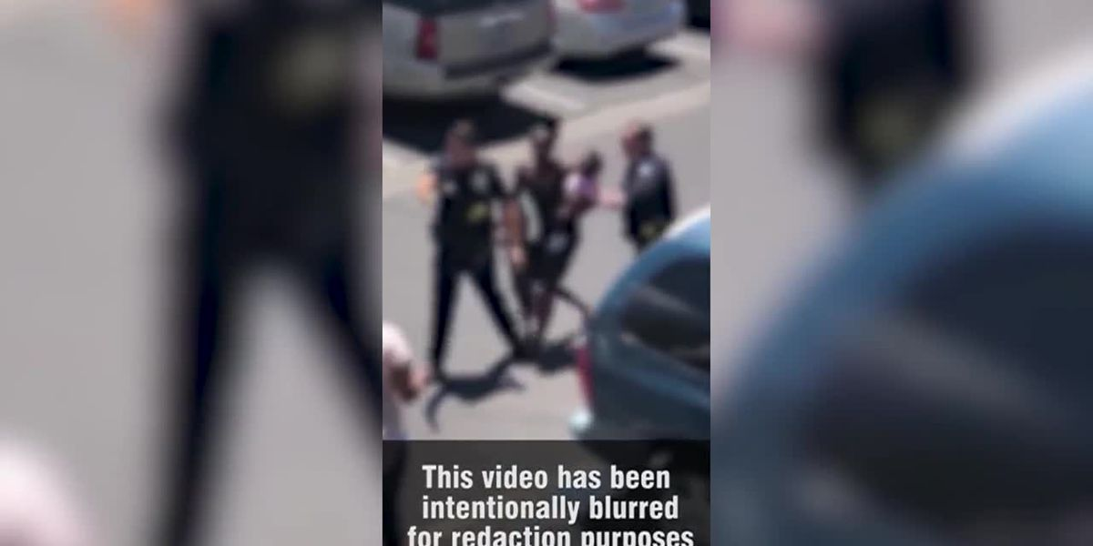 GRAPHIC: Video shows police using force, profanity against pregnant woman over alleged shoplifting