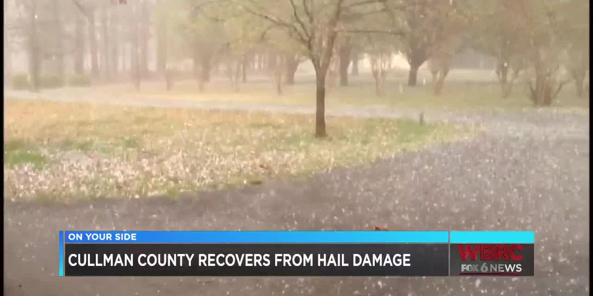 Cullman County recovers from hail damage