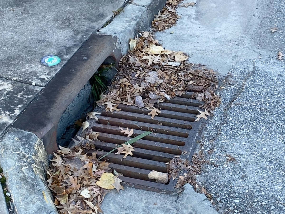 Who to call in Birmingham when storm drains are clogged