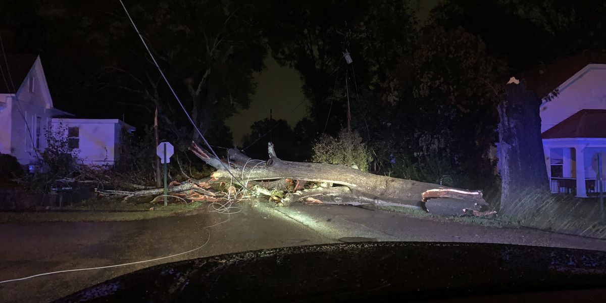 Damage reports coming in across central Alabama as Zeta pushes through