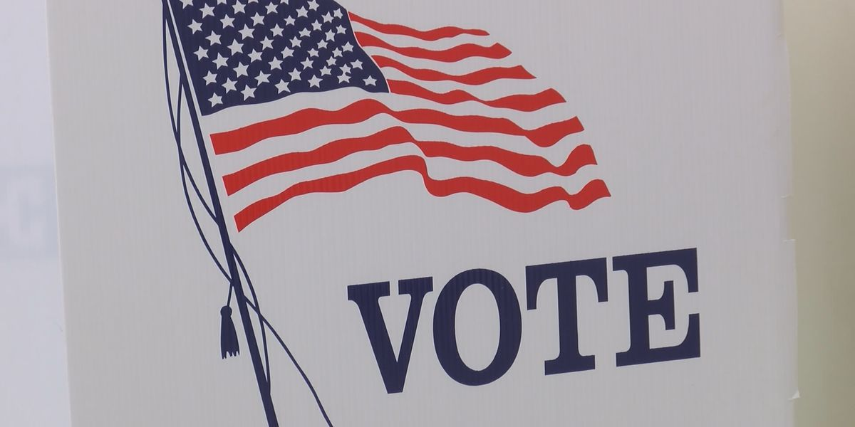 6 statewide constitutional amendments on Nov. 3 ballot