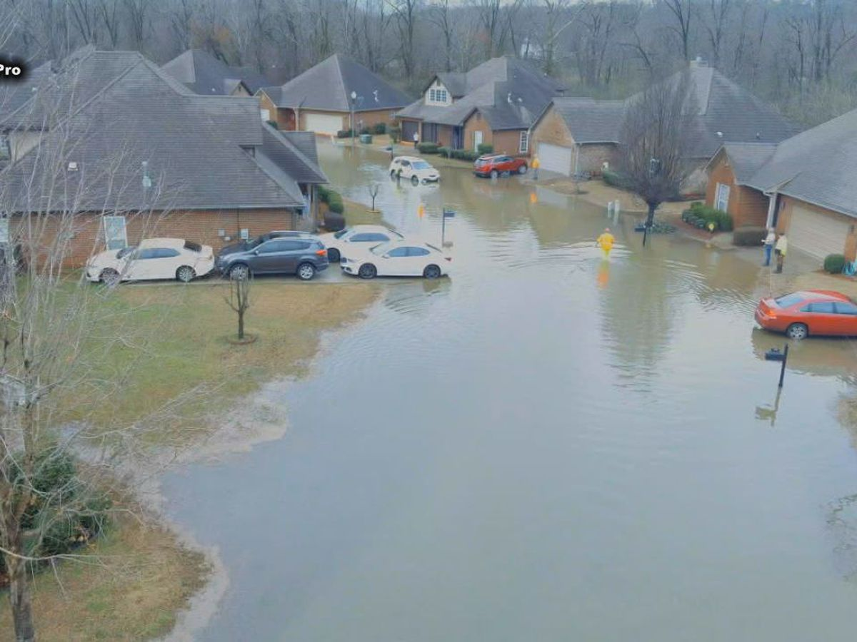 Floodwaters can be contaminated and require professional cleaning