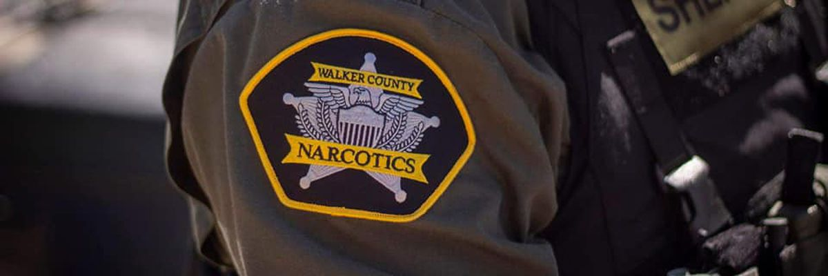 Ten people arrested in drug sweep in Walker Co.