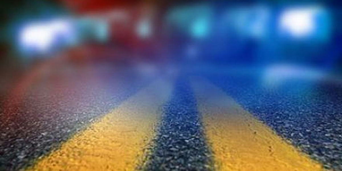 20-year-old woman, 20-year-old man killed in Walker County crash