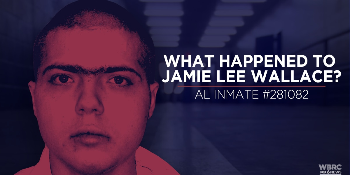 What happened to Jamie Lee Wallace?