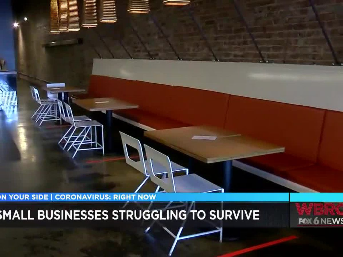 Small businesses struggle to open due to COVID-19