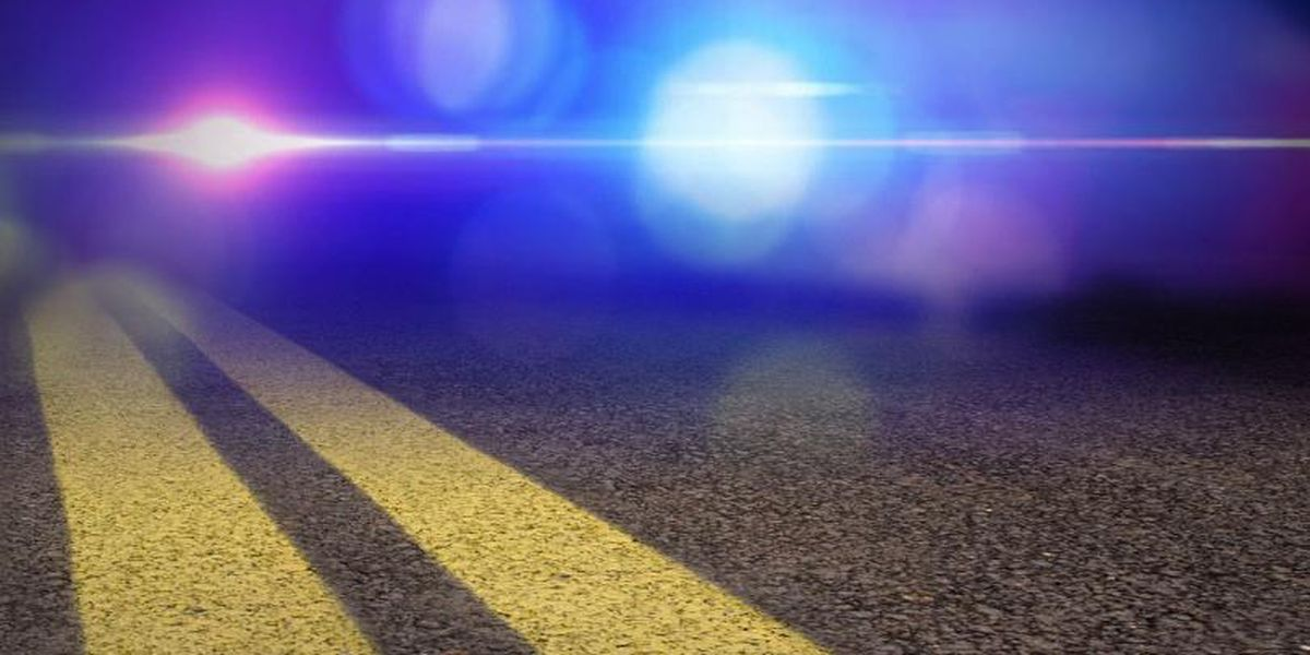 41-year-old man killed in rollover accident on I-59/20