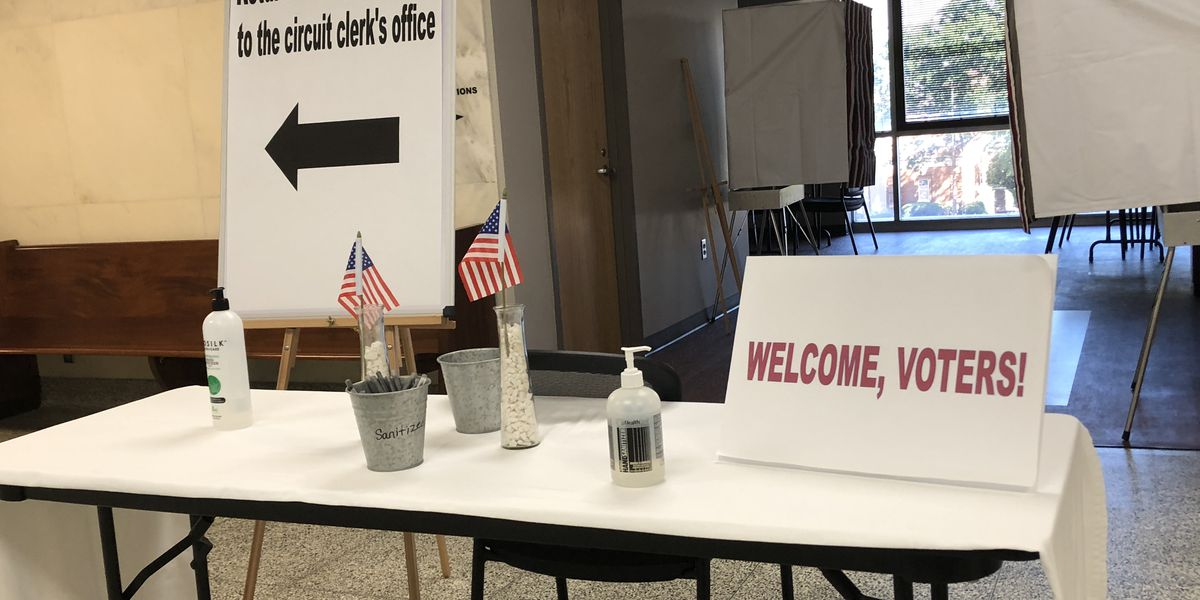Tuscaloosa County Democratic Party worried some absentee votes won't be counted